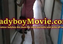 Thai ladyboy Am strokes her dig up abode solo